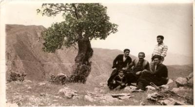 Azad-hamdi-3