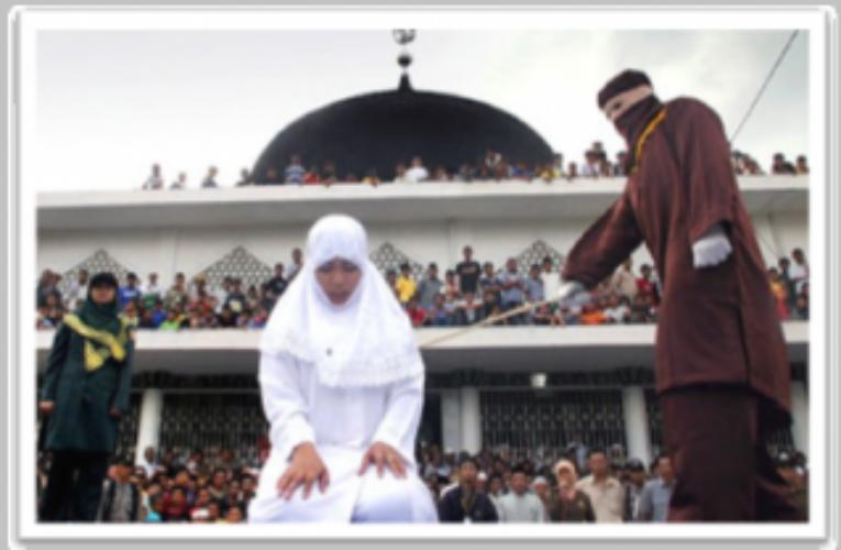 دارا خونچە :تیرۆری ئیسلامیی و تیرۆری دەولەتیی .