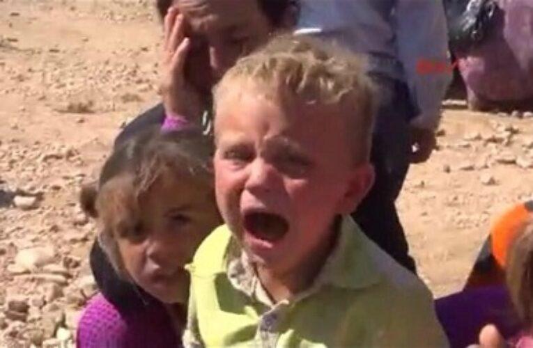 عماد علي : ان سقطت كوباني ارضا لن تسقط عزيمة و ارادة .